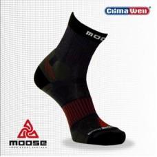Moose Active